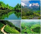 south india honeymoon tours packages